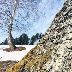 HÖF15 Rastplatz im Winter 2019